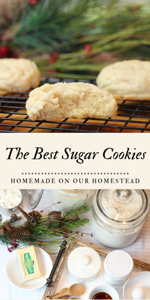 the best sugar cookie recipe, quick and easy sugar cookie, cookie decorating with kids, rustic living, food from scratch, handmade home #bestsugarcookierecipe #cookiedecoratingwithkids #easysugarcookies #eatallthecookies #rusticlivingfoodfromscratchhandmadehome #cookiedecoratingtradition